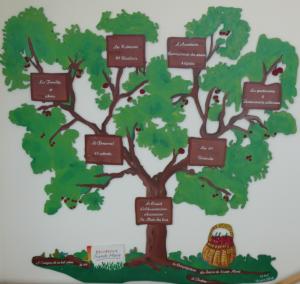 rsm-arbre-50-ans